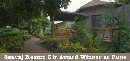 saavaj resort gir award winner at pune saavaj resort sasan gir award at pune saavaj resort