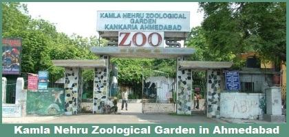 The Kamla Nehru Zoological Garden