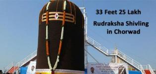 33 Feet 25 Lakh Rudraksha Shivling in Chorwad Gujarat Nominated in Limca Book of Records 2016