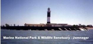 Marine National Park & Wildlife Sanctuary in Jamnagar Gujarat