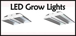 Best LED Grow Lights - Buy Led Grow Lights Online