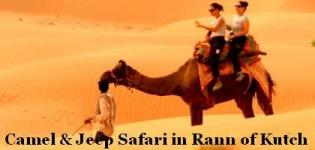 Camel and Jeep Desert Safari with Little Rann of Kutch in Gujarat