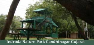 Indroda Nature Park Gandhinagar Gujarat- Indroda Park Timing-Fees-Address