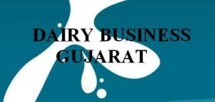 Dairy Business  in Gujarat India