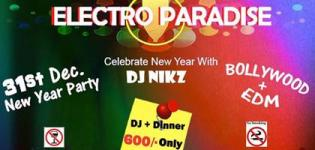 ELECTRO PARADISE New Year Party 2015 in NADIAD with DJ Nikz at Kheta Talav