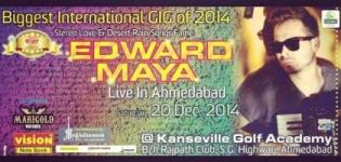 Stereo Love Fame Edward Maya Live in Concert in Ahmedabad on 20 December 2014
