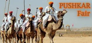 Famous Largest & Biggest Camel Animal Fair in Rajasthan India is PUSHKAR