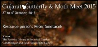 Gujarat Butterfly and Moth Meet at Koteshwar Gandhinagar from 2nd to 4th October 2015