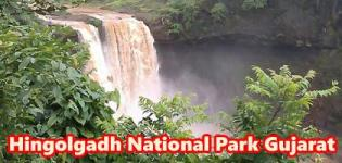 Hingolgadh National Park Gujarat - Hingolgadh Wildlife Sanctuary - Forest Information