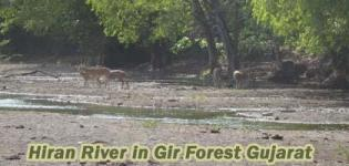 Hiran River in Gir Forest Junagadh Gujarat - Information - Details - Photos