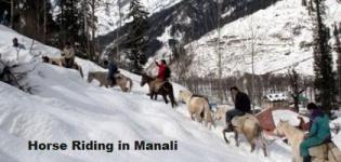 Horse Riding in Manali Himachal Pradesh