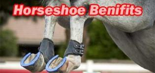Horseshoe Astrology - Ghode Ki Naal Benefits - Significance Power & Meaning of Horseshoe