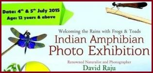 Indian Amphibian Photo Exhibition in Ahmedabad by Sundarvan on 4 & 5 July 2015