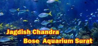 Jagdishchandra Bose Municipal Aquarium in Surat at Adajan Village Details - Timings - Photos