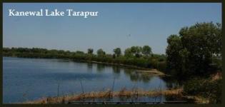 Kanewal Lake in Tarapur Gujarat