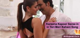 Kareena Kapoor Saree in Teri Meri Kahani Song - Black and Pink Designer Saree Blouse Photos