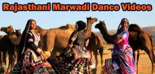 Marwadi Dance Videos - Best Rajasthani Dance Performance