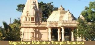 Nageshwar Mahadev Temple Saputara - Nageshwar Temple Gujarat