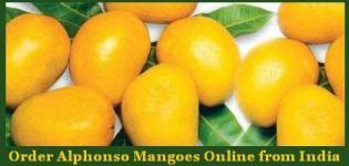 Order Alphonso Mangoes Online from India - Alphonso Mango Online Shopping