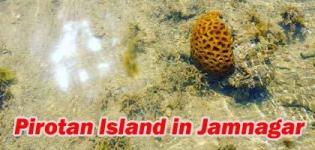 Pirotan Tapu near Jamnagar - Pirotan Island Marine National Park Timings - Photos