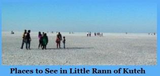 Places to See in Little Rann of Kutch - Visit White Rann of Kutch