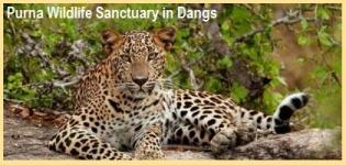 Purna Wildlife Sanctuary in Dangs Gujarat - How to Reach Purna Wildlife Sanctuary