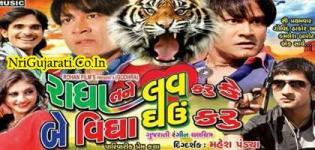 Radha Tane Love Karun Ke Be Vigha Ghaun Karu - 2015 Gujarati Movie Release - Watch Trailer