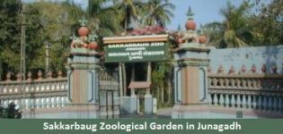 Sakkarbaug Zoological Garden in Junagadh Gujarat - Timings of Sakkarbaug Zoo Park