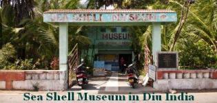 Sea Shell Museum Diu - Seashell Museum in Diu India