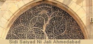 Sidi Saiyad Ni Jali in Ahmedabad Gujarat - Sidi Saiyad Ni Jali History Ahmedabad