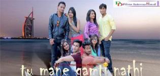 Urban Gujarati Movie Tu Mane Gamti Nathi 2016 - Cast Release Date Details