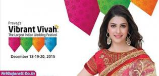 Vibrant Vivah the Largest Indian Wedding Festival 2015 - Global Wedding Fair in Gujarat