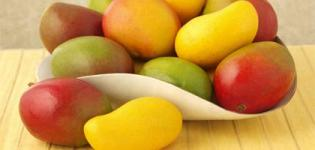 Which is State Fruit of Gujarat India - Mango (Keri) Verities Photos - Types of Mango Images
