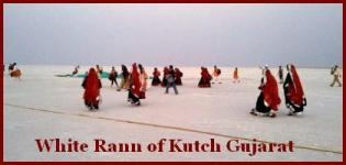 White Rann of Kutch Gujarat Photo - White Sand Desert Rann of Kutch