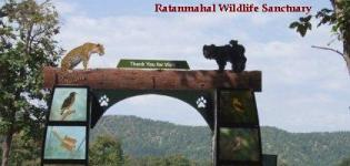 Ratanmahal Sloth Bear Sanctuary Dahod Gujarat - Ratanmahal Wildlife Sanctuary
