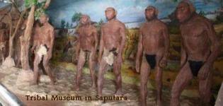 Tribal Museum Saputara near Ahmedabad